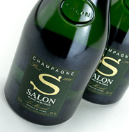 Salon Le Mesnil 1996